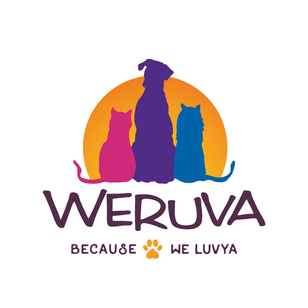 Save 50% on Weruva Cat Food @ Sunset Feed Miami