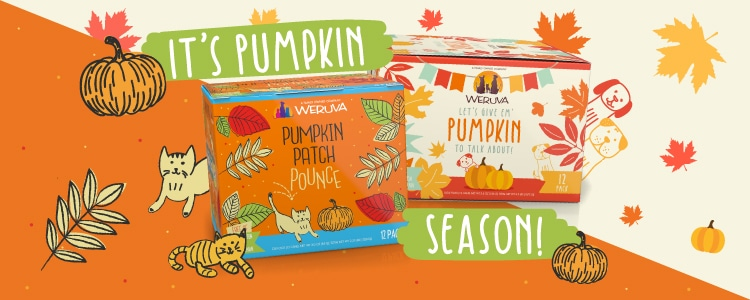 Pumpkin Season with Weruva!